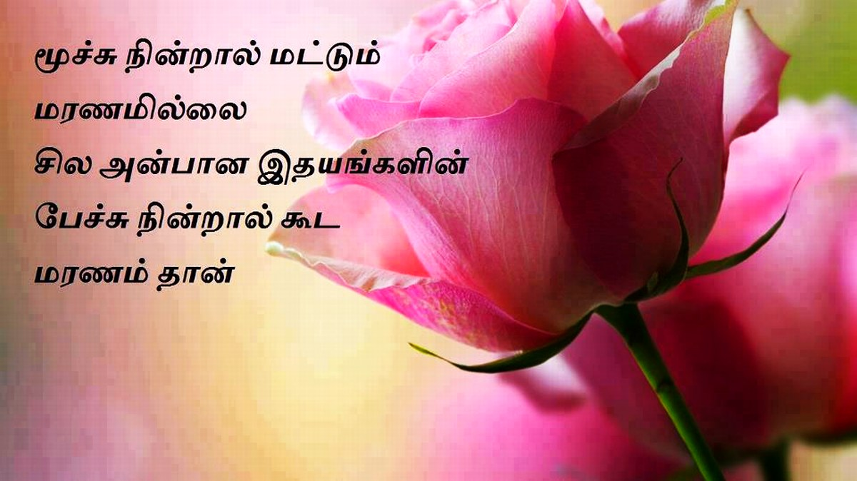 A great love feelings kavithai in tamil of roses