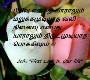Tamil lovely rose with Message