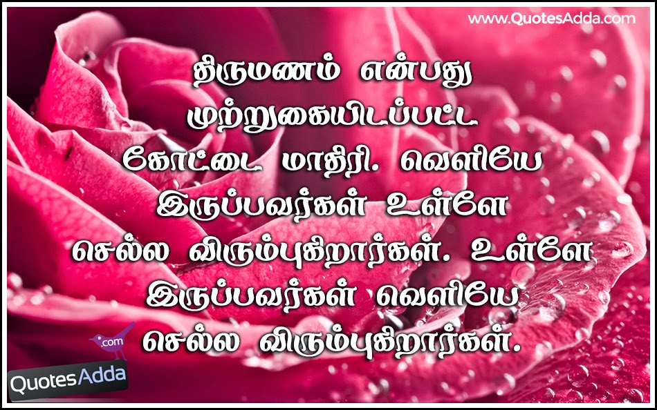 Beautiful rose with marriage wishes in Tamil font image