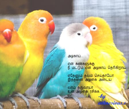 Tamil kadhal kavithaigal hd image of birds with quote