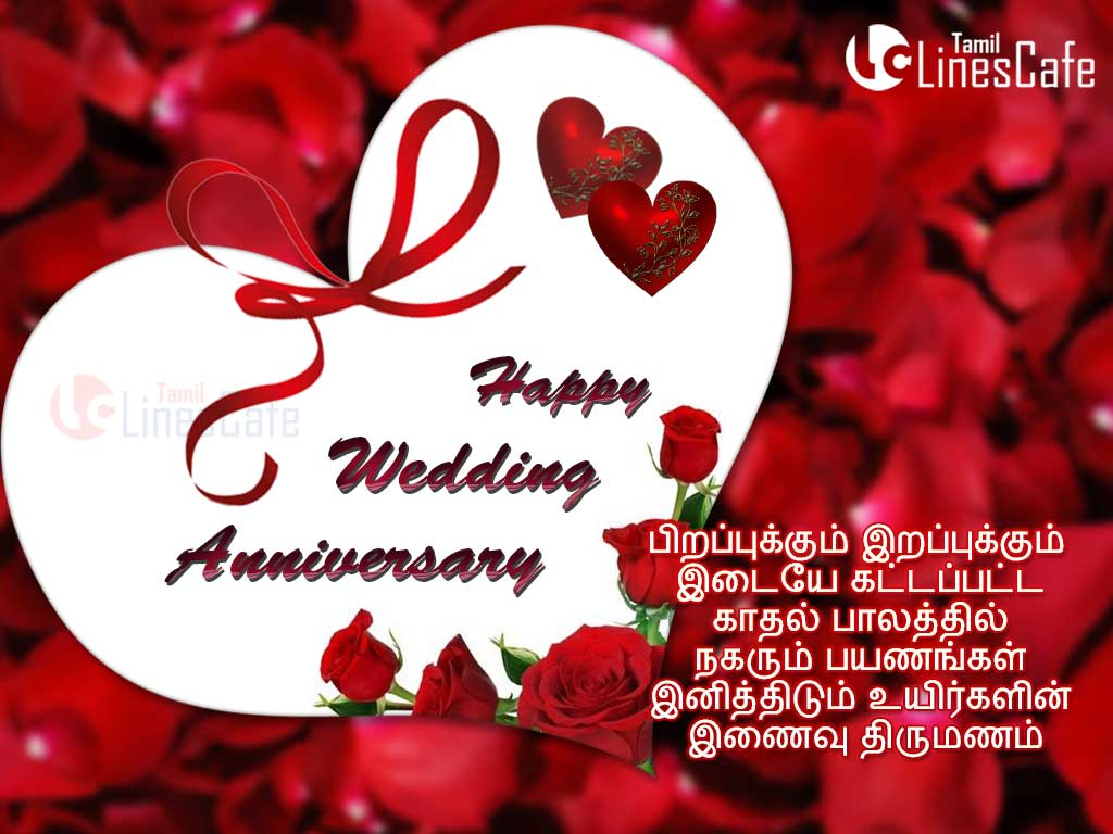 Wishing wedding anniversary with red heart hd image in tamil